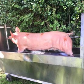 Shropshire Hills Catering mobile hog roast at the Sun Inn August 2018